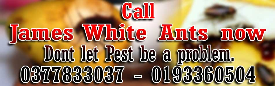 james_white_pest_control
